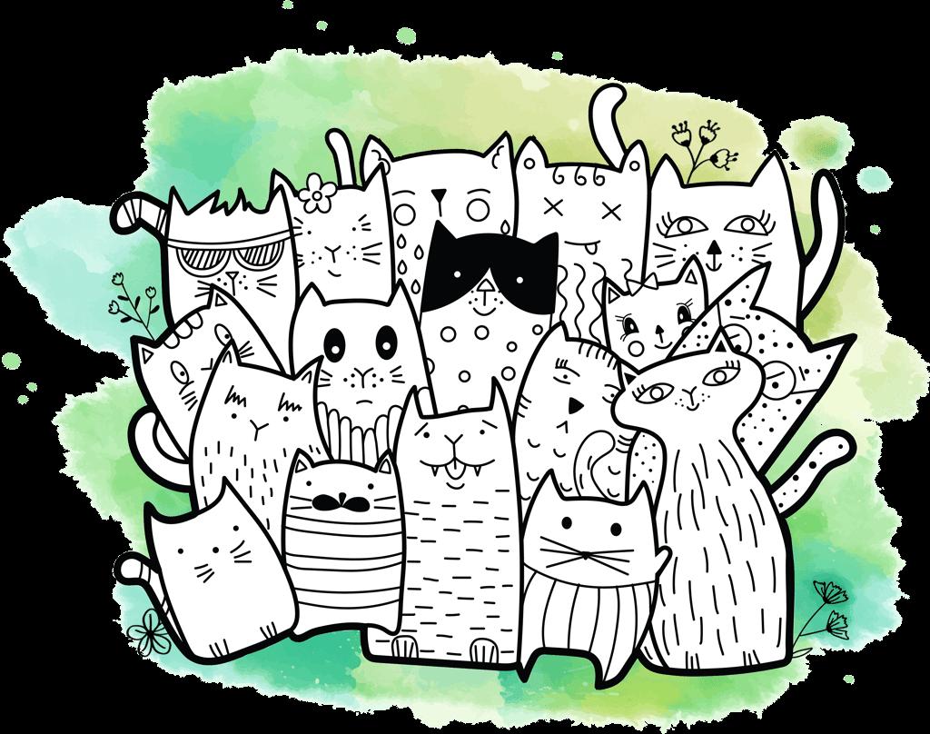 ensemble de chats