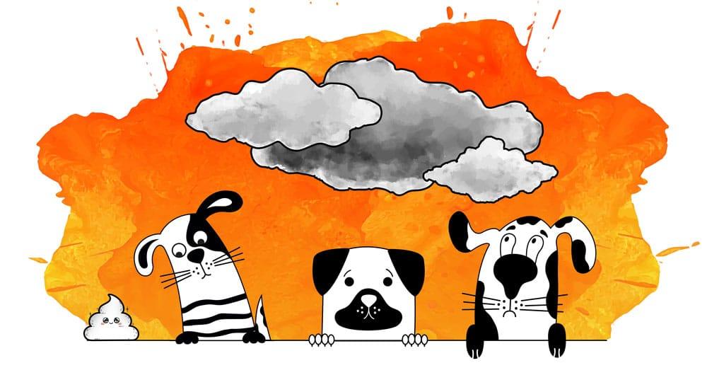 symptômes stress chien