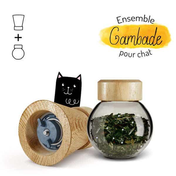 Illustration complément alimentaire ensemble gambade chat