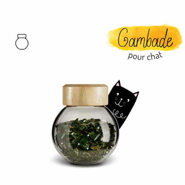 Illustration complément alimentaire gambade chat