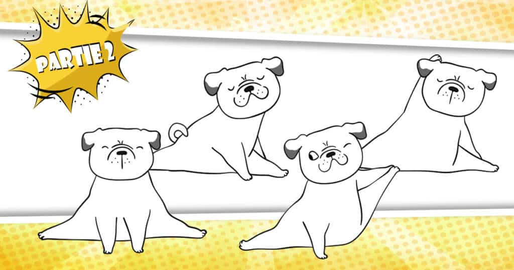 prévenir arthrose chien naturellement