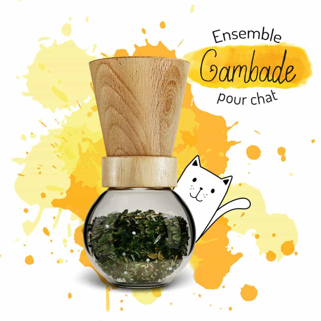 complement alimentaire chien chat naturel arthrose articulations
