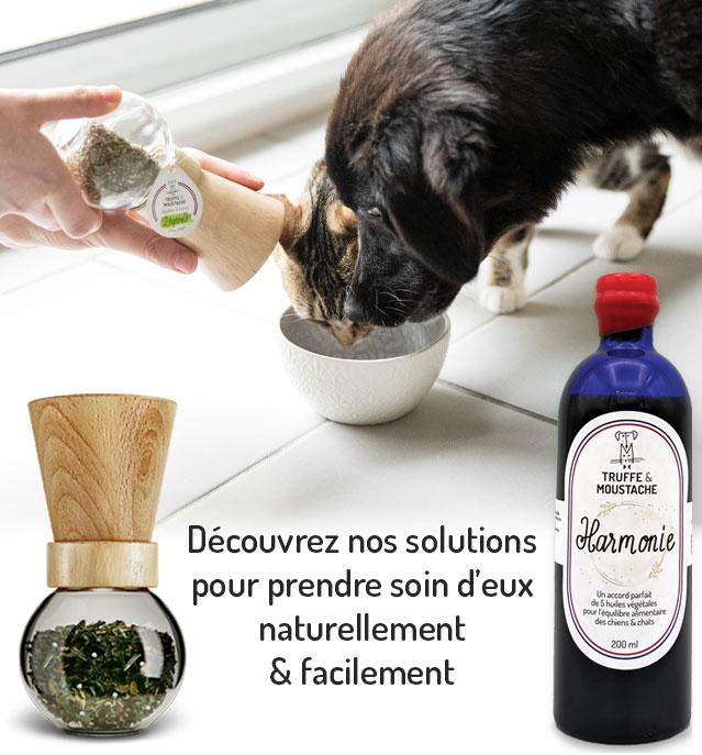 decouvrez soin naturel pour chiens et chats