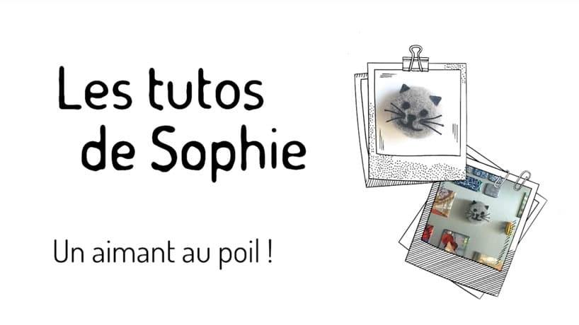 tutoriel Sophie aimant poil chat chien