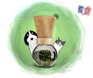boutique Truffe & Moustache compléments alimentaires naturels pour chiens et chats