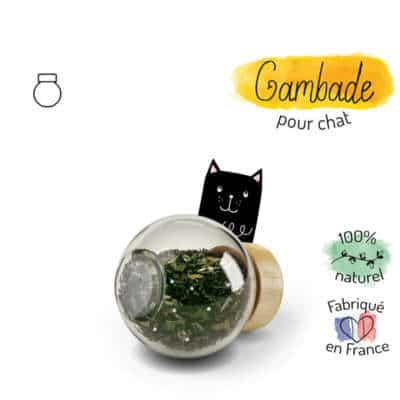 gambade complément alimentaire chat arthrose et articulations