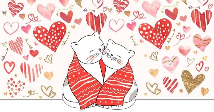 bonne cohabitation deux chats