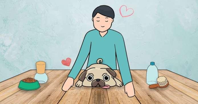 soin poil pelage chien naturel
