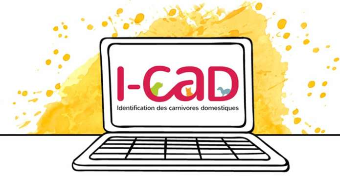 ICAD identification des carnivores domestiques chiens chats