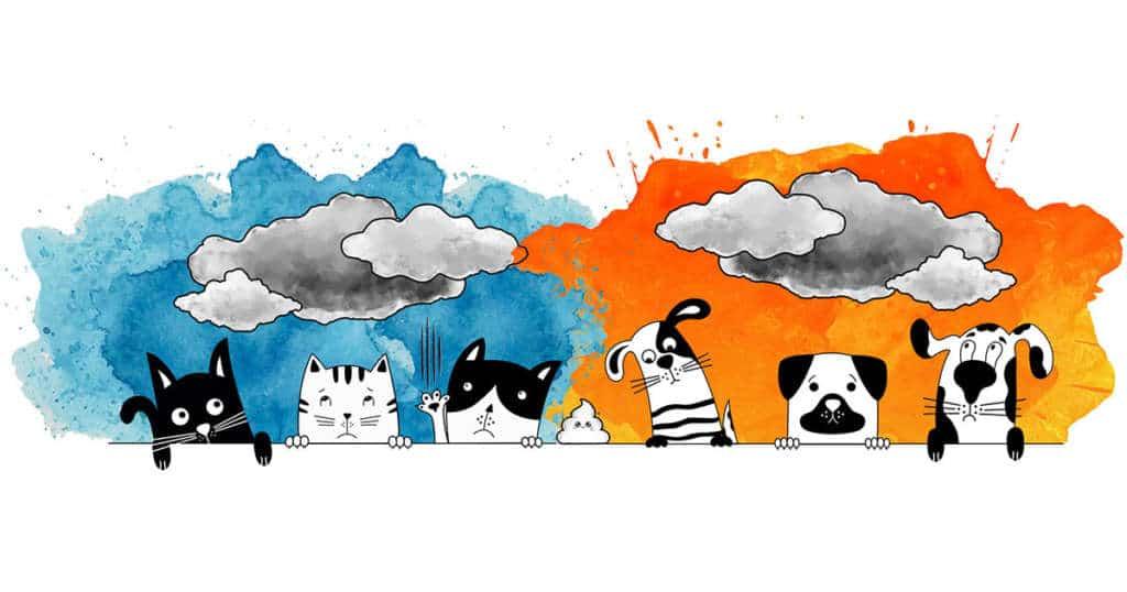 dossier stress chien chat