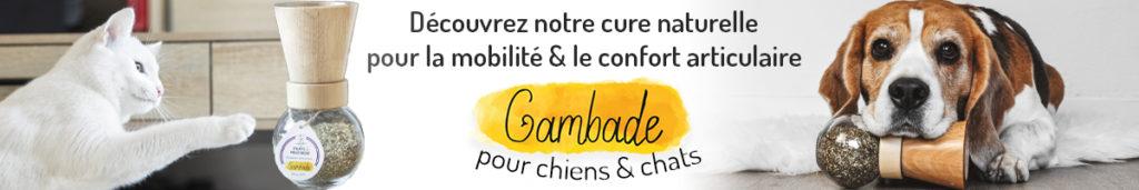 Découvrez Gambade Mobilite Confort Articulaire Chiens Chats