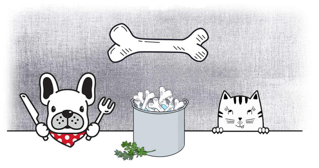 recette bouillon d'os chien chat