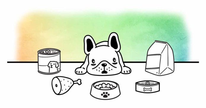 transition alimentaire chien complément digestion