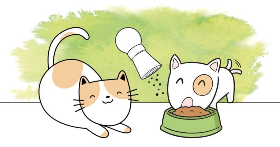 introduire complément alimentaire chien et chat
